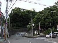 長野高等学校