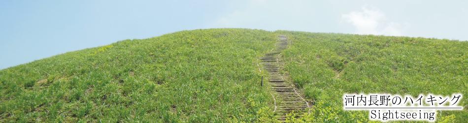 河内長野のハイキング