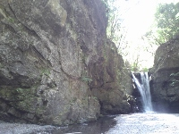 岩湧寺の長寿水(通年)
