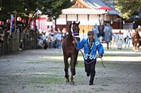 住吉神社の馬かけ神事(10月)