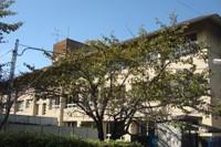 天野小学校